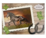 Desky na číslice Wild horse 7744